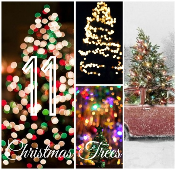 11ChristmasTrees